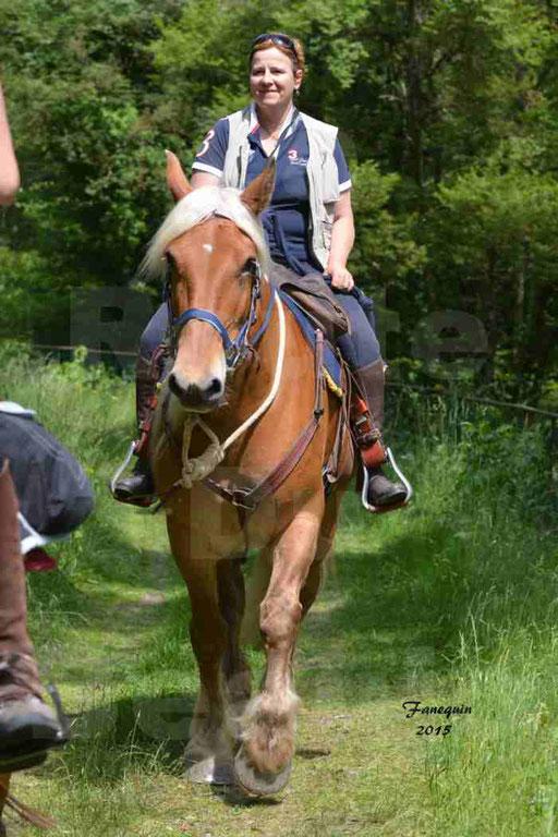 La Route Du Beaujolais 2015 - samedi 23 mai 2015 - parcours en après midi - 39