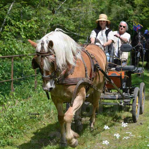 La Route Du Beaujolais 2015 - samedi 23 mai 2015 - parcours en après midi - 04