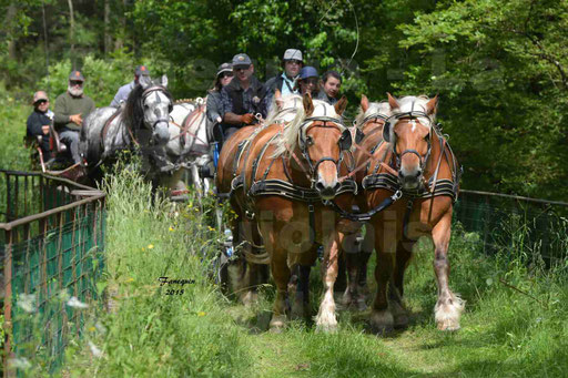 La Route Du Beaujolais 2015 - samedi 23 mai 2015 - parcours en après midi - 54