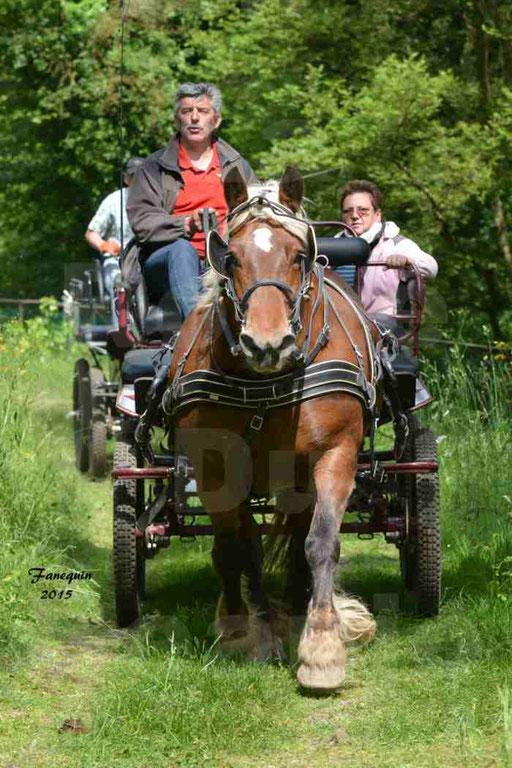La Route Du Beaujolais 2015 - samedi 23 mai 2015 - parcours en après midi - 57