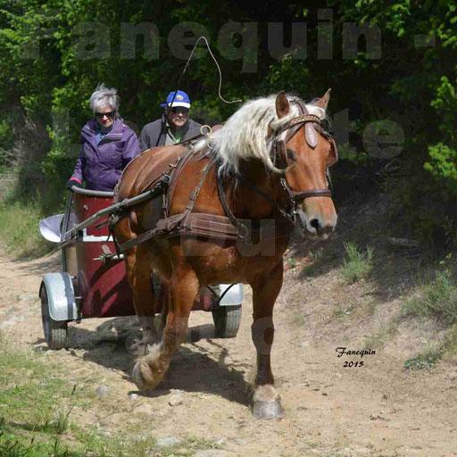 La Route Du Beaujolais 2015 - samedi 23 mai 2015 - parcours en matinée - 55