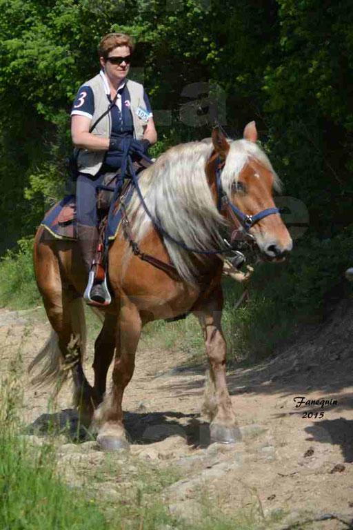 La Route Du Beaujolais 2015 - samedi 23 mai 2015 - parcours en matinée - 40
