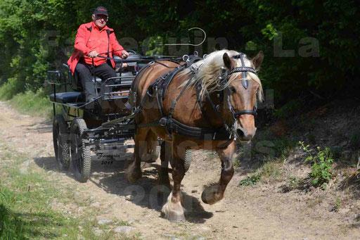 La Route Du Beaujolais 2015 - samedi 23 mai 2015 - parcours en matinée - 33