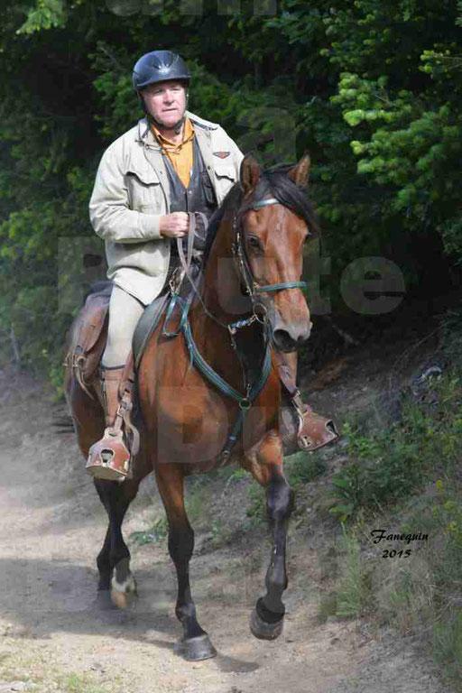 La Route Du Beaujolais 2015 - samedi 23 mai 2015 - parcours en matinée - 11