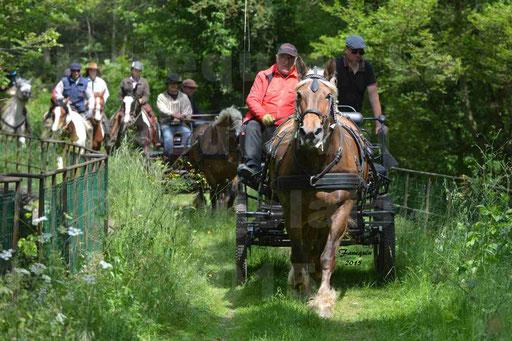 La Route Du Beaujolais 2015 - samedi 23 mai 2015 - parcours en après midi - 24