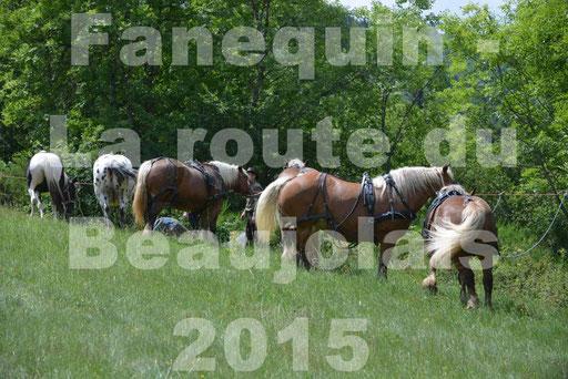 La Route Du Beaujolais 2015 - dimanche 24 mai 2015 - pause déjeuner - 06
