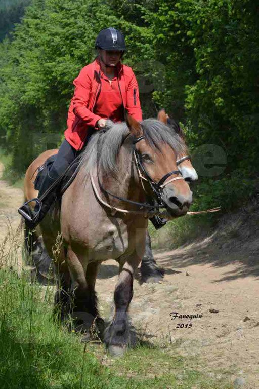 La Route Du Beaujolais 2015 - samedi 23 mai 2015 - parcours en matinée - 49