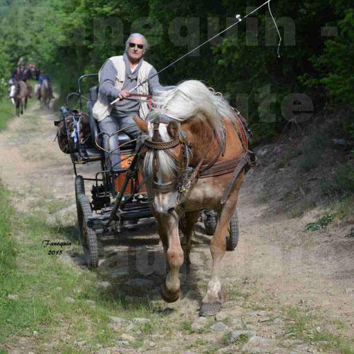 La Route Du Beaujolais 2015 - samedi 23 mai 2015 - parcours en matinée - 16