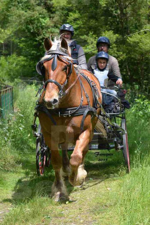 La Route Du Beaujolais 2015 - samedi 23 mai 2015 - parcours en après midi - 15