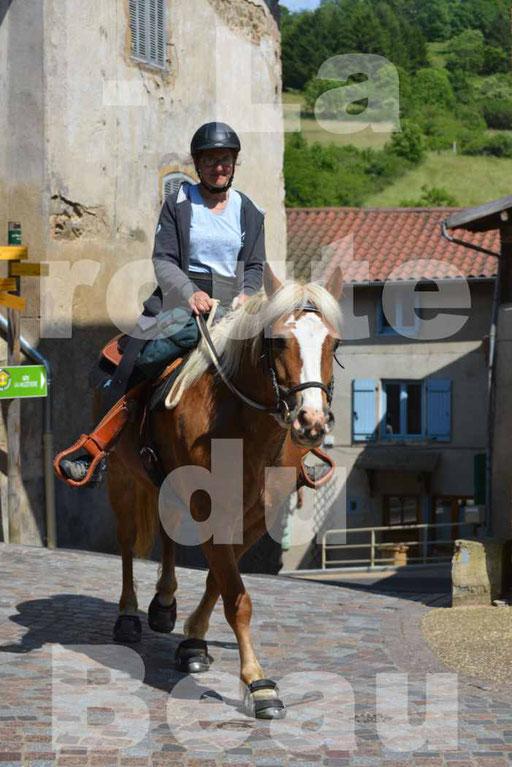 La Route Du Beaujolais 2015 - dimanche 24 mai 2015 - parcours et arrivée place d'un village - 67