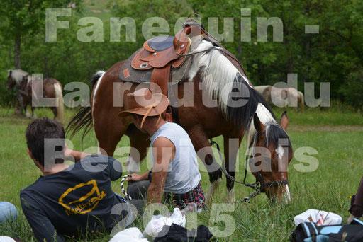 La Route Du Beaujolais 2015 - dimanche 24 mai 2015 - pause déjeuner - 08