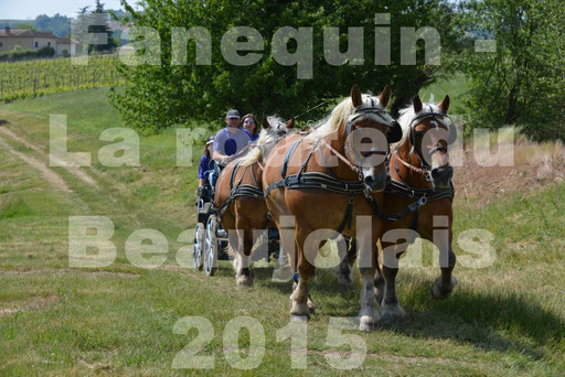 La Route Du Beaujolais 2015 - dimanche 24 mai 2015 - parcours en matinée - 76