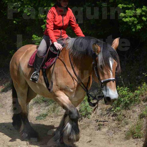 La Route Du Beaujolais 2015 - samedi 23 mai 2015 - parcours en matinée - 50