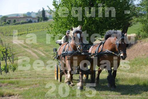 La Route Du Beaujolais 2015 - dimanche 24 mai 2015 - parcours en matinée - 68