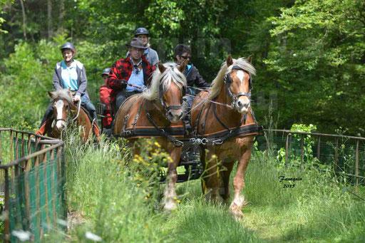 La Route Du Beaujolais 2015 - samedi 23 mai 2015 - parcours en après midi - 01