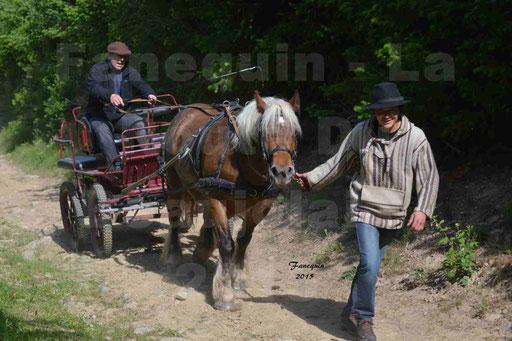 La Route Du Beaujolais 2015 - samedi 23 mai 2015 - parcours en matinée - 34