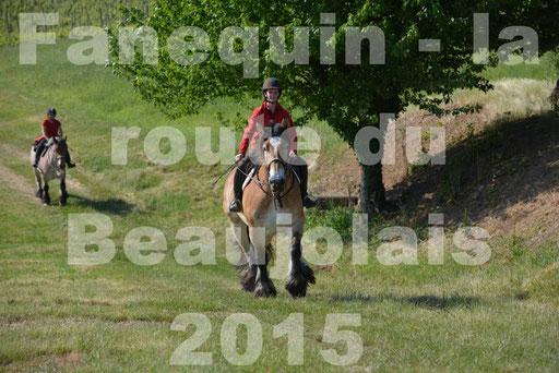 La Route Du Beaujolais 2015 - dimanche 24 mai 2015 - parcours en matinée - 10