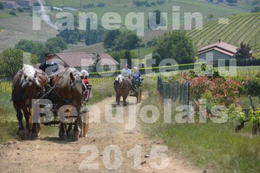 La Route Du Beaujolais 2015 - dimanche 24 mai 2015 - parcours en matinée - deuxième partie - 14