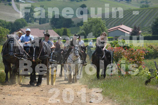 La Route Du Beaujolais 2015 - dimanche 24 mai 2015 - parcours en matinée - deuxième partie - 29