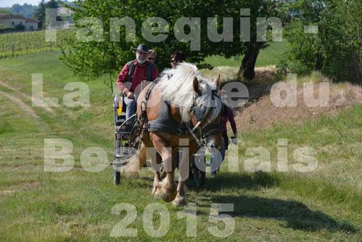La Route Du Beaujolais 2015 - dimanche 24 mai 2015 - parcours en matinée - 53
