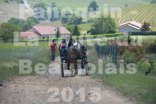 La Route Du Beaujolais 2015 - dimanche 24 mai 2015 - parcours en matinée - deuxième partie - 05
