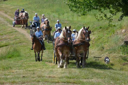 La Route Du Beaujolais 2015 - dimanche 24 mai 2015 - parcours en matinée - 69