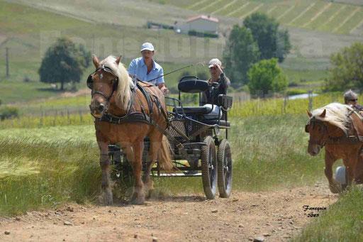 La Route Du Beaujolais 2015 - dimanche 24 mai 2015 - parcours en matinée - deuxième partie - 24