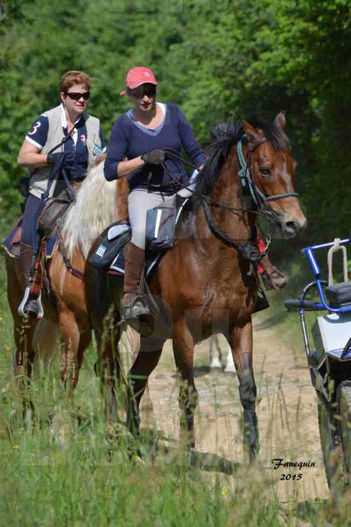 La Route Du Beaujolais 2015 - samedi 23 mai 2015 - parcours en matinée - 39