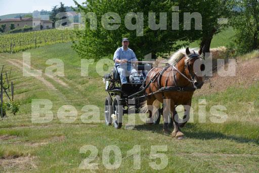 La Route Du Beaujolais 2015 - dimanche 24 mai 2015 - parcours en matinée - 79