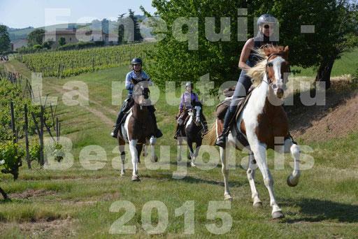 La Route Du Beaujolais 2015 - dimanche 24 mai 2015 - parcours en matinée - 42