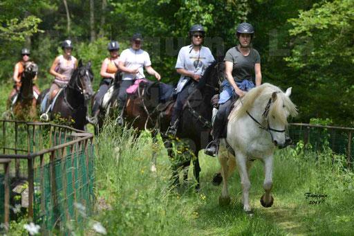 La Route Du Beaujolais 2015 - samedi 23 mai 2015 - parcours en après midi - 40