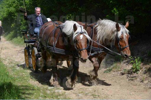 La Route Du Beaujolais 2015 - samedi 23 mai 2015 - parcours en matinée - 35