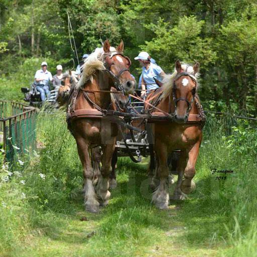 La Route Du Beaujolais 2015 - samedi 23 mai 2015 - parcours en après midi - 62