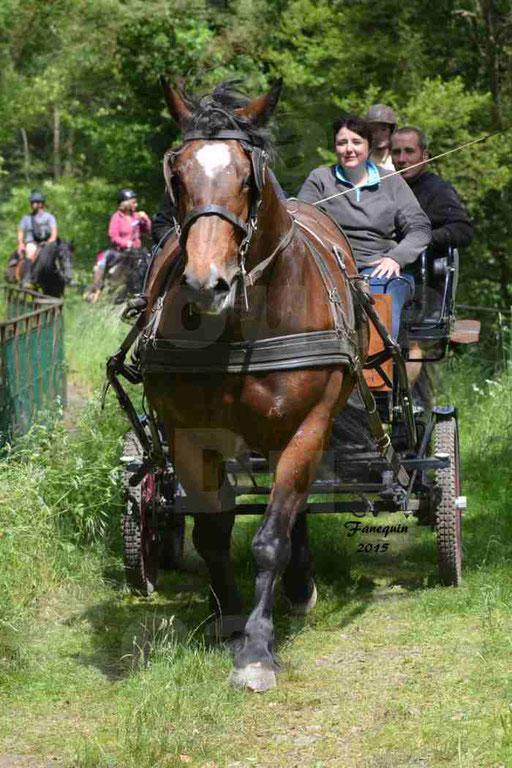 La Route Du Beaujolais 2015 - samedi 23 mai 2015 - parcours en après midi - 46