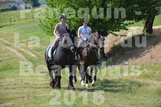 La Route Du Beaujolais 2015 - dimanche 24 mai 2015 - parcours en matinée - 66