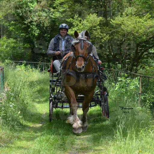 La Route Du Beaujolais 2015 - samedi 23 mai 2015 - parcours en après midi - 14