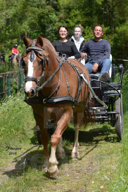 La Route Du Beaujolais 2015 - samedi 23 mai 2015 - parcours en après midi - 45