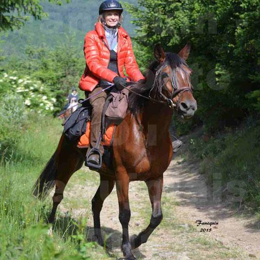 La Route Du Beaujolais 2015 - samedi 23 mai 2015 - parcours en matinée - 03