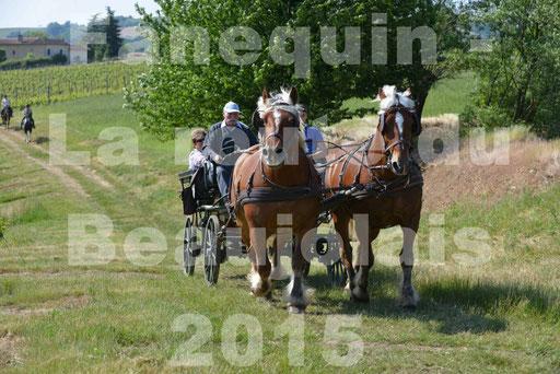 La Route Du Beaujolais 2015 - dimanche 24 mai 2015 - parcours en matinée - 64