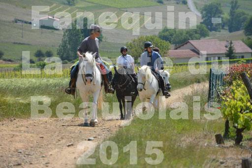 La Route Du Beaujolais 2015 - dimanche 24 mai 2015 - parcours en matinée - deuxième partie - 11