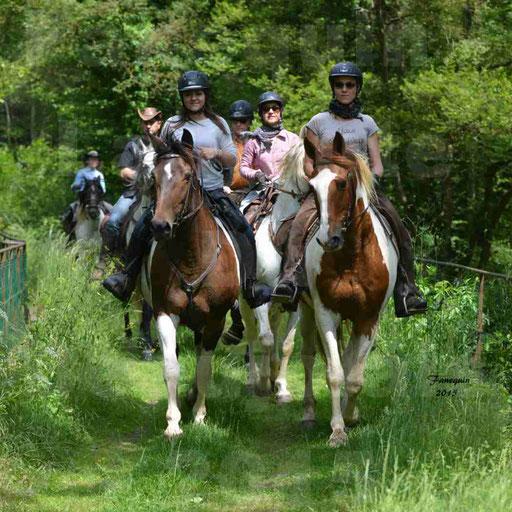 La Route Du Beaujolais 2015 - samedi 23 mai 2015 - parcours en après midi - 10