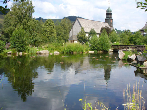 Kurpark Bernau
