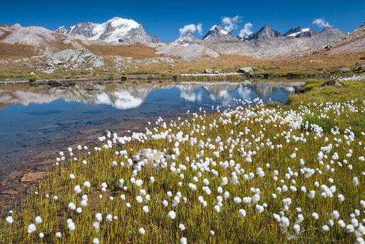 Nationalpark Gran Partadiso - Italien