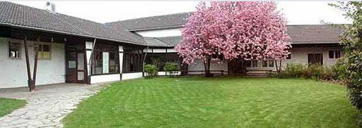 Hier seht ihr unseren Kirschbaum in voller Blütenpracht.