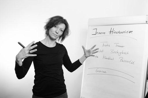 Corinna Setzer, Systemisches Coaching