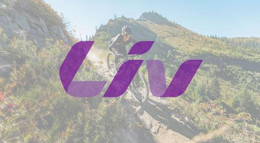 e-Mountainbikes von Liv 2021 im Detail mit Specs und Rahmengeometrien