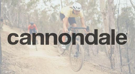 e-Mountainbikes von Cannondale 2021 im Detail mit Specs und Rahmengeometrien