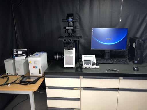 Time-lapse microscopy.