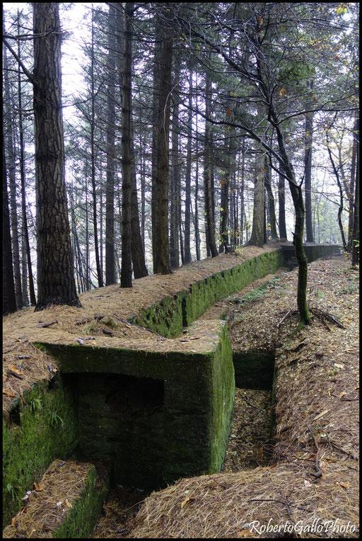 Montegrino - Fortificazioni Linea Cadorna