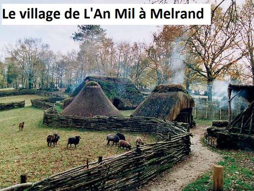 un village du moyen-âge avec animaux, jardin médicinal, animations...
